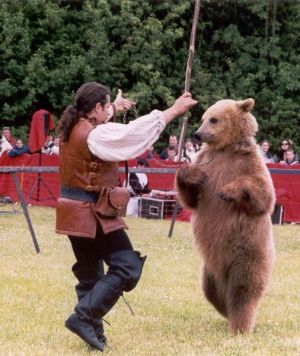 Team building, Le Spectacle de l'Ours  - 2