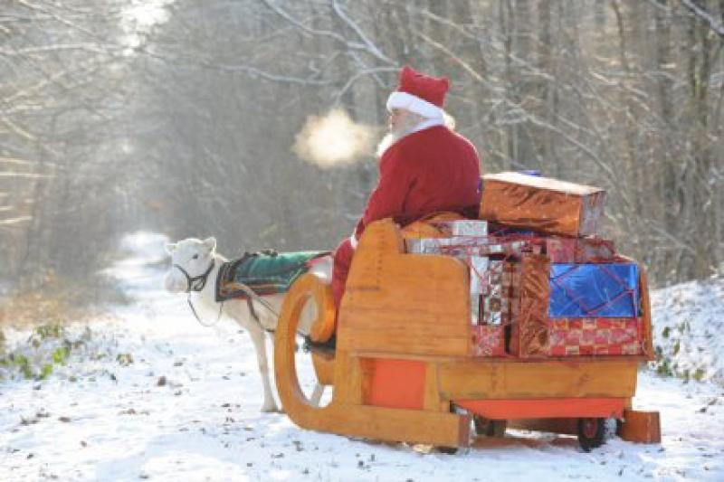Team building, Le renne du Père Noël - 3